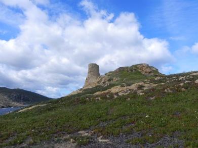 Korsika 14 186